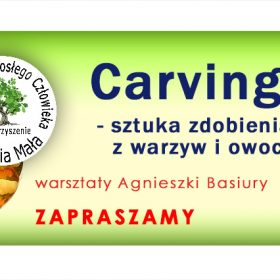 UDC_carv_sliderwp